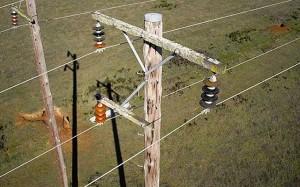 استفاده از پهپاد برای برسی خطوط فشار قوی برق